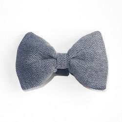 Dog Bow Tie Male