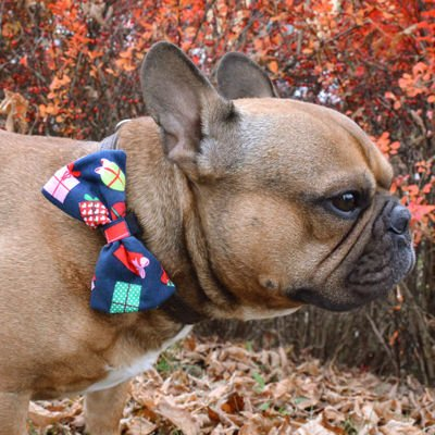 Dog Bow Tie, gift for dog, Pet Bow Tie, Bowtie, Collar Attachment, model Gift